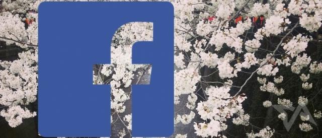 facebook-users-in-Japan-2013